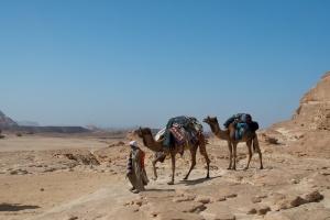 Desert taxis